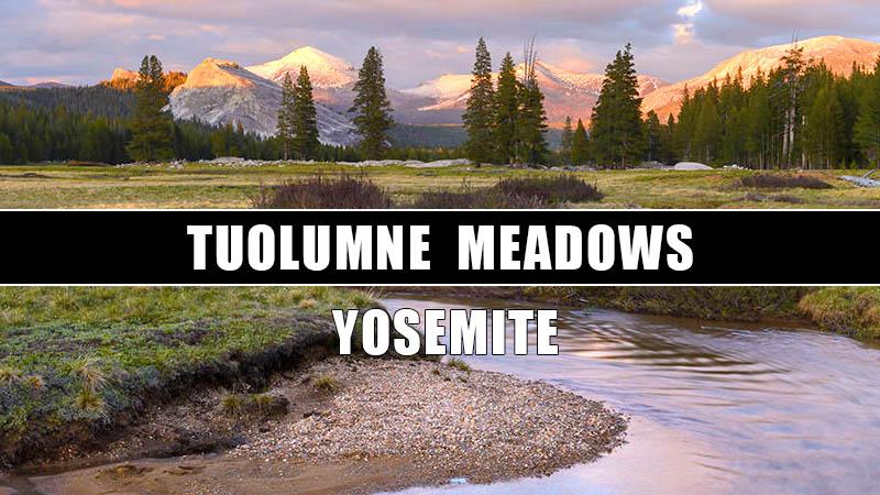 QUE VER EN TUOLUMNE MEADOWS YOSEMITE