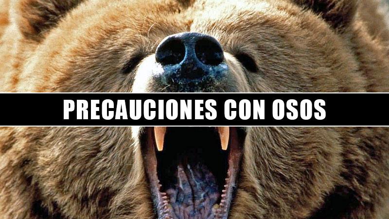 precauciones con osos en yosemite