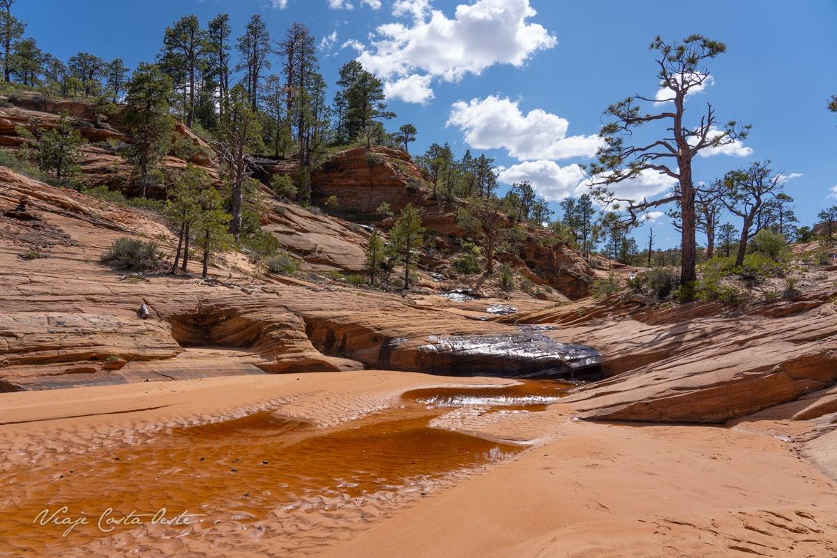 Water Canyon Trail para llegar a los White Domes y ver la Ola Blanca